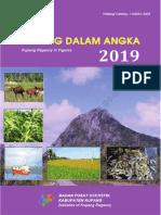 Kabupaten Kupang Dalam Angka 2019.pdf