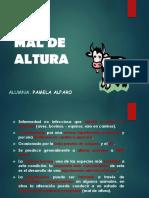 MAL DE ALTURA 1.pptx