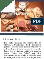 Bioquimica de Proteinas