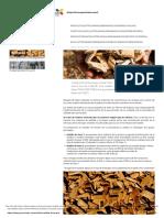 Tipos de Biomasa y Cómo Saber Si Es de Calidad_ Las Astillas _ Greenheiss