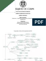 Mapa Conceptual aldehídos y cetonas