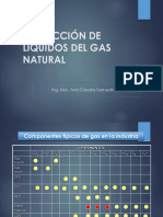 EXTRACCIÓN DE LÍQUIDOS DEL GAS NATURAL.pptx
