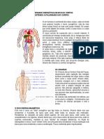 Polaridade Energética Em Nossos Corpos.docx