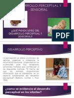 Desarrollo Perceptual (1)