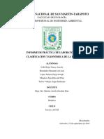CLASIFICACIÓN DE LA RAÍZ.docx