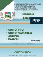 Activo y Pasivo Economia