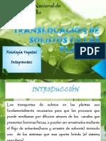 Transporte de Solutos - Fisiologia Vegetal
