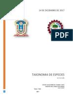 informe taxonomia