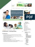Enrofloxacina - Fluoroquinolonas