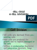 cell cicle  cell division-materi3.pdf