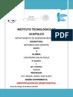 D.E.-identificacion-de-gram-positivos.docx