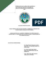 Plan de Investigacion Colectivo Grupo 8