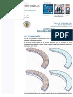 Docdownloader.com Analisis y Diseo de Escalera Helicoidal