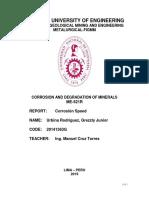 Primer Informe de Lab en Ingles-corrosion