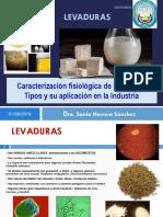 LEVADURAS-Clase 4.pdf
