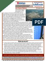 201812beaconenglish_1.pdf