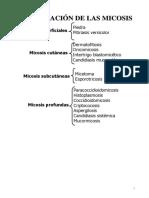 clasificaciondelamicosis-190207010403.pdf