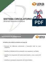 Clase 7. Sistema Circulatorio, Arterial-Venoso-linfático