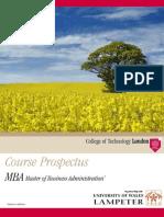CTL Brochure MBA