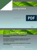 psicolinguistica-2-chomsky-2010-finb.ppt