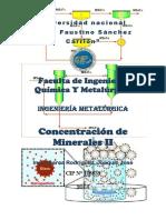171932879-Guia-de-Concentracion-de-Minerales-II.docx