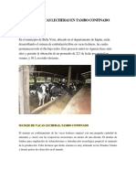 Manejo de Vacas Lecheras en Tambo Confinado