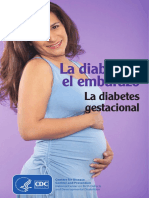 Diabetes and Pregnancy Sp