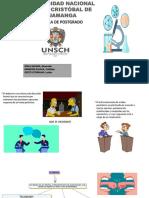 Didactica Universitaria- El Debate