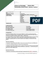 17. Programas 2015_psicología Evolutiva II (3)