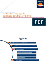 91598947-FIGAS-2011-REPSOL-Ciaccarelli.pdf