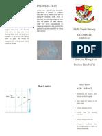 Brochure YIC.docx