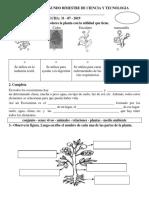 EVALUACION SEGUNDO BIMESTRE DE CIENCIA Y TECNOLOGIA.docx