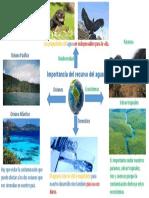 Mapa mental Importancia del recurso del agua..pptx
