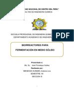 Biorreactores Para Fermentación en Medio Sólido-Informe