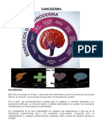 PRODUCTO-Y-SUS-BENEFICIOS-2018-5.pdf