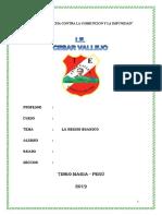Monografia Region de Huanuco