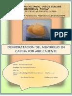 3er Informe de Laboratorio de Tecnologia de Secado Terminado y Entregado