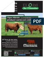 Catálogo Don Florentino