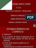 BIENES_MERCANTILES.pdf