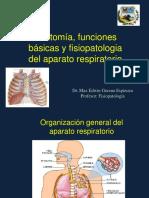 Fisiopatologia respiratoria