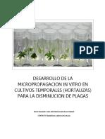desarrollo de micropropagacio en cultivos.docx
