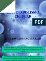 EL_METABOLISMO_CELULAR.ppt