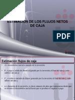 estimacion flujos netos de caja.pdf