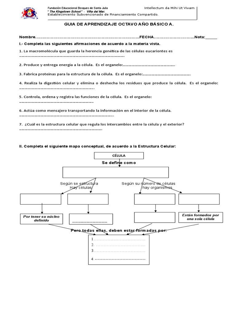 Guia Celula 8 Histología Organismos