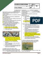 227600306-Prova-Impressionismo-2-ª-a-Cor.docx
