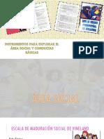 Exposicion Area Social y Conductas Basicas