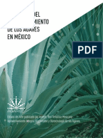 AGAVE DE MEXICO.pdf