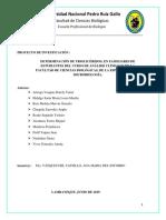 INFORME-ANALISIS-2 final.docx
