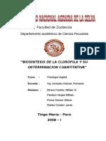 4 - Biosintesis de La Corofila y Su Determinacion Cuantitativa