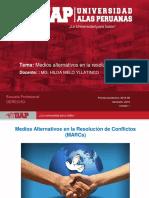 SEM 2-MECANISMOS ALTERNATIVOS..pdf